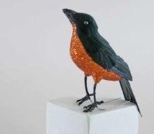 Scarecrow Blackbird