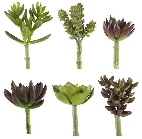 "4-6"" Succulent Picks set of 6"
