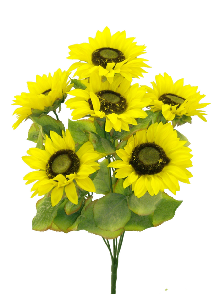 Color Fast Sunflower Bush X 7 H22 Yellow