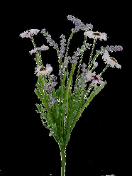 Daisy Filler Bush H23 Purple