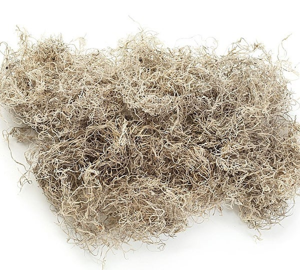 FLORAL-SPANISH MOSS 1 cu ft