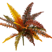 "Fall Boston Fern bush x 16 lvs 11""L"
