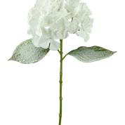 Snowy Hydrangea Stem H29 White