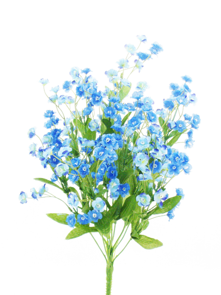 Color Fast Double Baby Breath x 11 H19 Blue