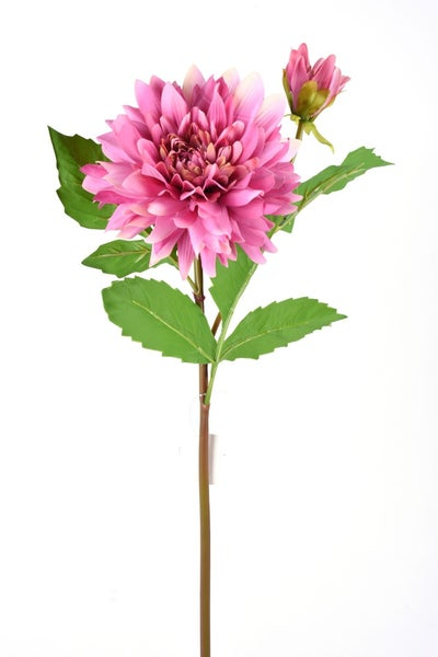 "22"" FRESH TOUCH DAHLIA STEM Fuchsia"