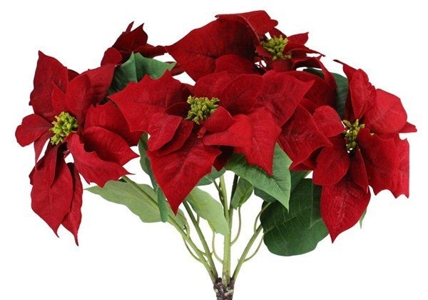 "22""L Poinsettia Bush"