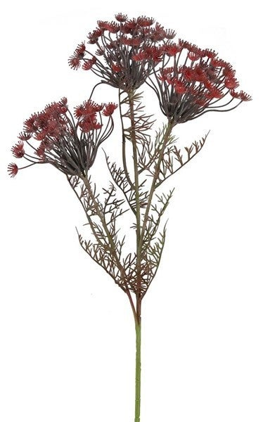"30""L Queen Anne's Lace Stem RED/BURGUNDY"
