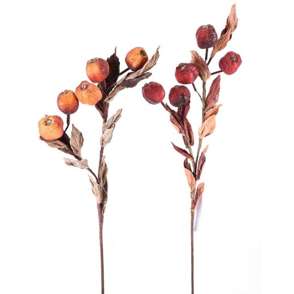 DRIED BERRY STEM Set of 2