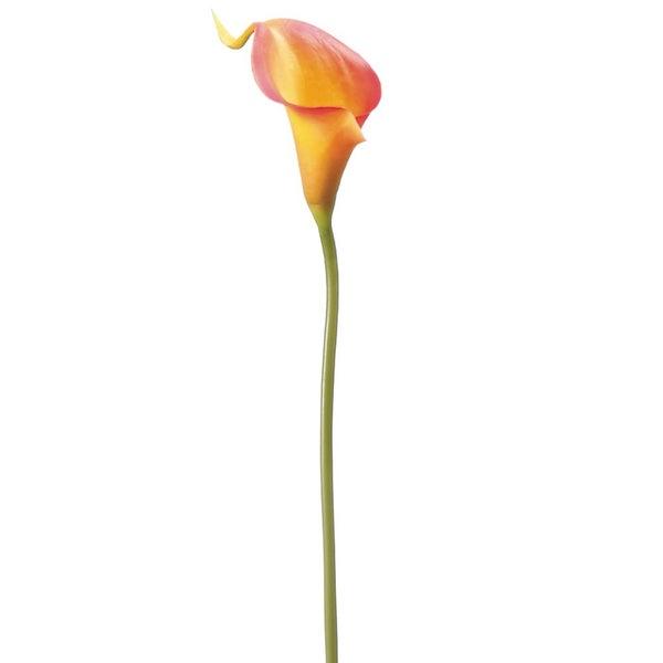 """15"""" Mini Calla Lily Spray  Orange"""