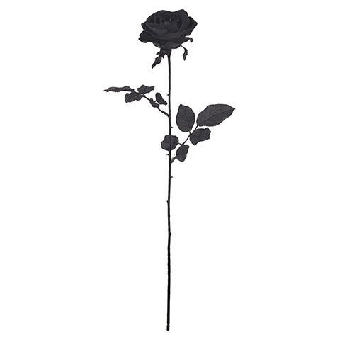 Long Stem Rose Pick: Black, 3 X 26 Inches