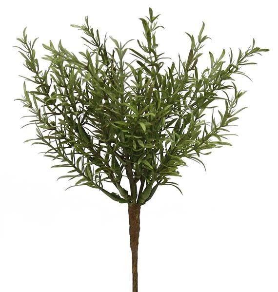 "9""L Rosemary Pick"