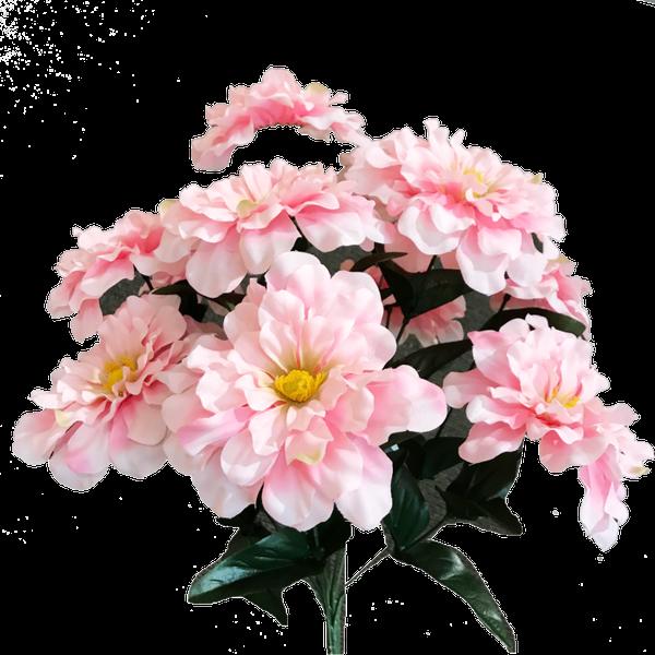 Zinnia Bush x 11 H18 Pink