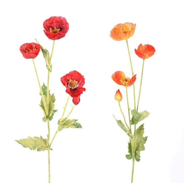 "23"" POPPY SPRAY"