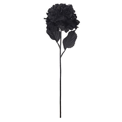 Longstem Hydrangea Pick: Black, 4 X 27 Inches