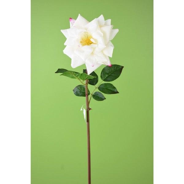 """25.5"""" GARDEN ROSE STEM White"""