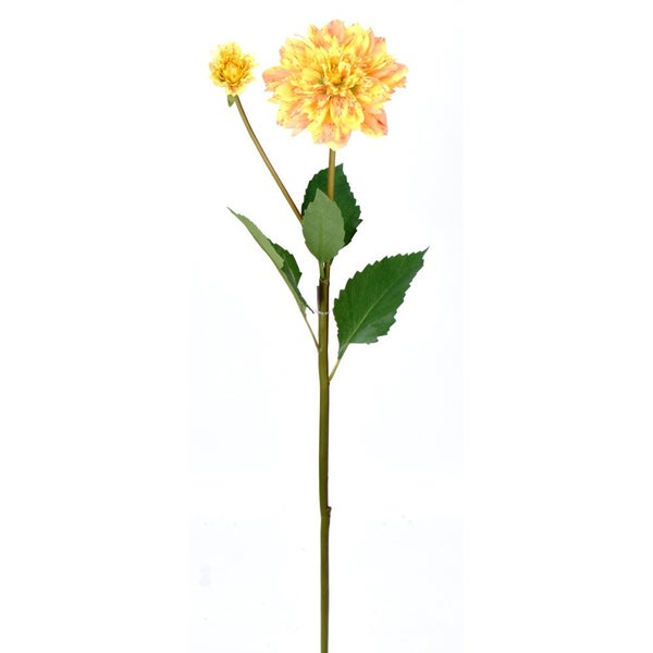 "25"" DAHLIA STEM W BUD Yellow"