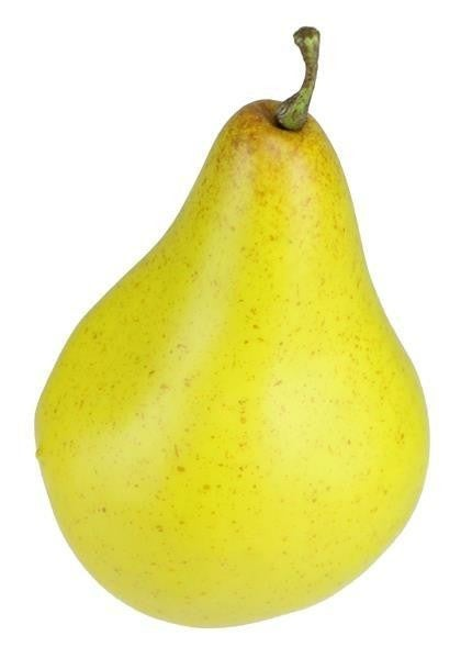 "4.25""L Bosc Pear box of 6"