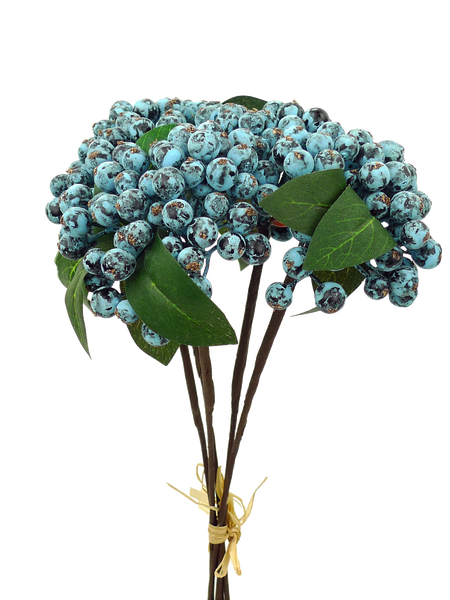Blueberry Bundle X 5 H11