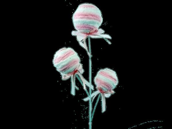 Ball Spray X 3 H24 Pink white
