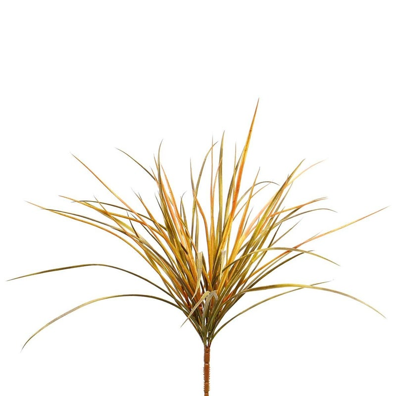 FALL ACCENT GRASS