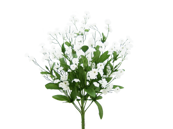 Color Fast Double Baby's Breath White