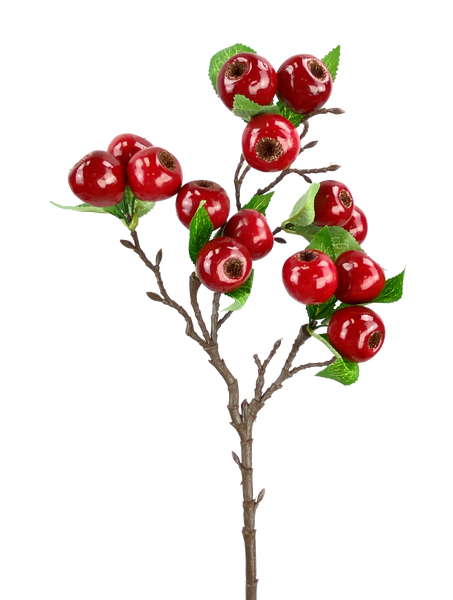 Berry Spray H23  Red