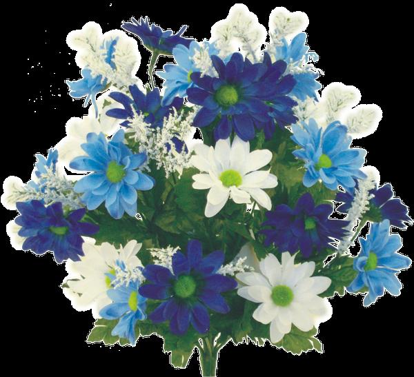 Colorfast Daisy Mix Bush