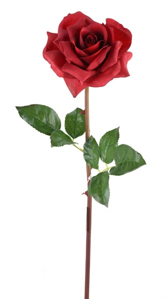 "25"" FRESH TOUCH OPEN ROSE STEM RED"