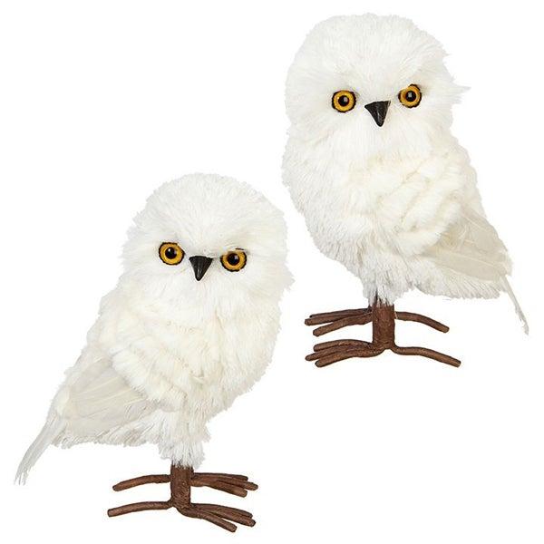 """7.5\"""" OWL White"""
