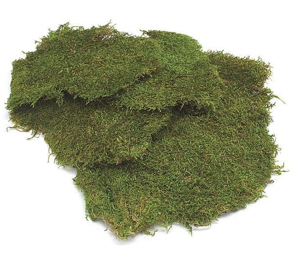 FLORAL SHEET MOSS FRESH GREEN Bag