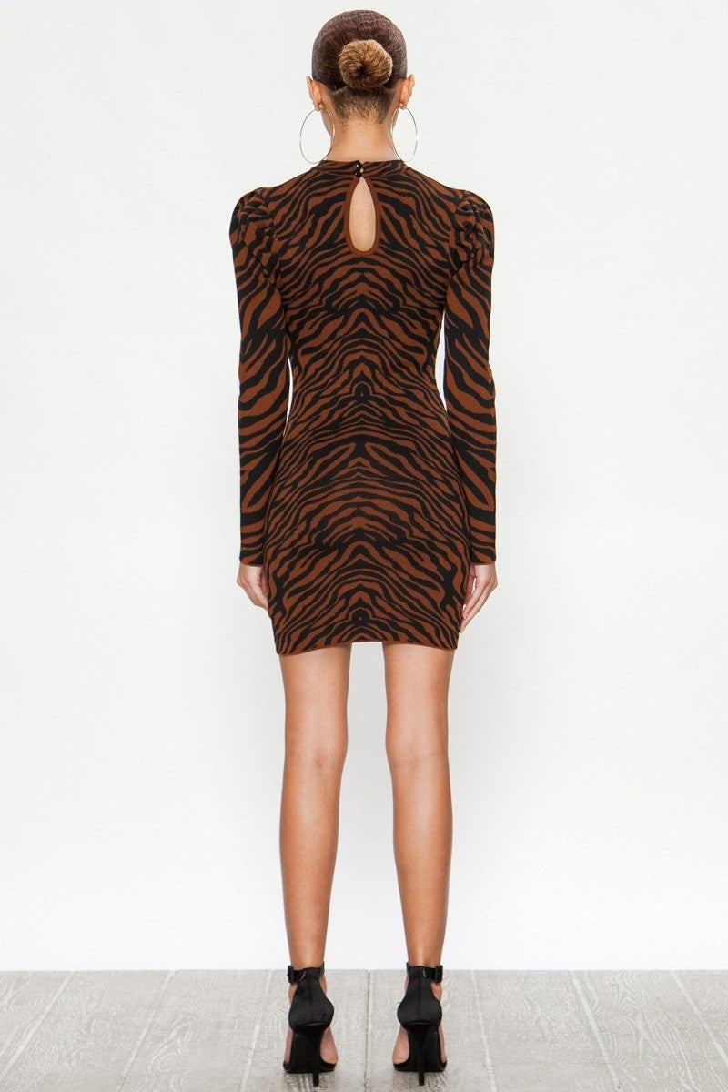 Fitted Zebra Dress
